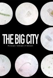 The Big City (1970)