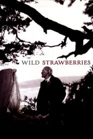 Wild Strawberries Juliste