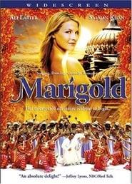 bilder von Marigold