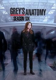 Grey's Anatomy - Season 6