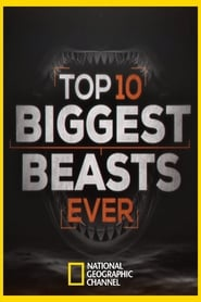 Top 10 biggest beast ever