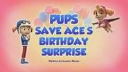 Pups Save Ace's Birthday