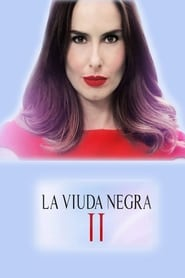 Griselda Blanco: The Black Widow streaming vf poster
