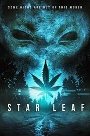 Imagen Star Leaf