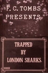 Trapped by London Sharks Stream deutsch