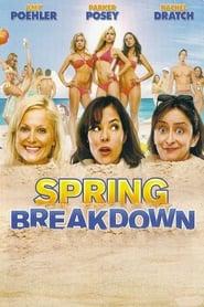 Spring Breakdown en streaming