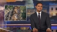 The Daily Show with Trevor Noah saison 23 episode 24