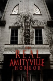 The Real Amityville Horror (2017)