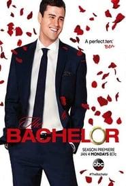 The Bachelor TV Series