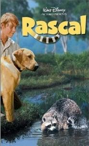 Rascal locandina