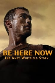 ver La historia de Andy Whitfield