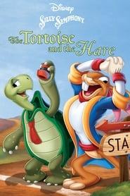 La lepre e la tartaruga