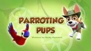 Paw Patrol saison 3 episode 21