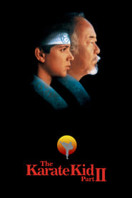 Watch The Karate Kid, Part II (1986)