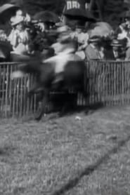 Courses d'ânes: II, la course