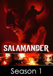 Salamander streaming vf poster