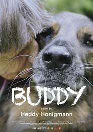 Watch Buddy (2019)