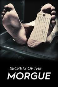 Secrets of the Morgue