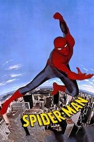 A Csodálatos pókember
