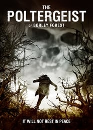 Foto di The Poltergeist of Borley Forest