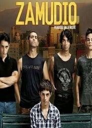 Zamudio: Lost in the Night