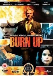 Burn up