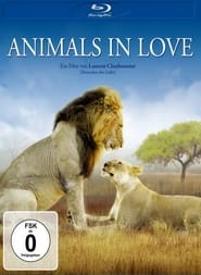 Animals in Love (2006)