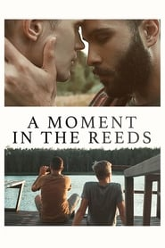 A Moment in the Reeds 2018