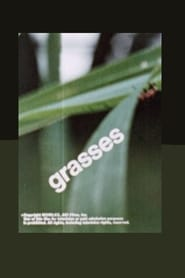 At Your Fingertips: Grasses
