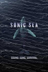watch movie Sonic Sea online