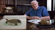 David Attenborough's Natural Curiosities saison 4 streaming episode 5