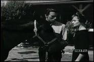 Perry Mason Season 3 Episode 5 : The Case of the Startled Stallion