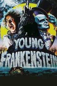 Young Frankenstein imagem