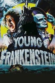 Foto di Young Frankenstein