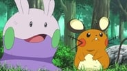 Pokémon Season 18 Episode 8 : One for the Goomy!