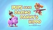 Pups Save Daring Danny's Hippo