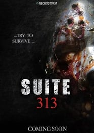 Film Suite 313 2017 en Streaming VF