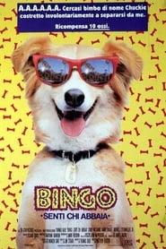 Bingo - Senti chi abbaia