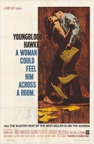 Youngblood Hawke Film Plakat