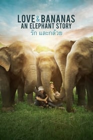 Love & Bananas: An Elephant Story (2018) Watch Online Free
