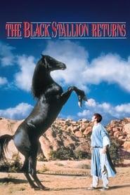 The Black Stallion Returns Netflix HD 1080p