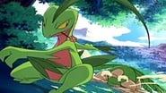 Pokémon Season 9 Episode 16 : Odd Pokémon Out!