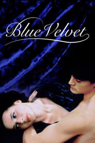 Blue Velvet en streaming