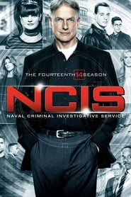 NCIS - Season 12 Season 14