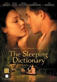 The Sleeping Dictionary affisch