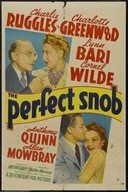 The Perfect Snob