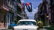 Palestine Now & Viva Cuba Libre