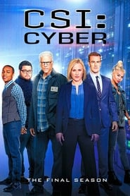 CSI: Cyber: 2 Staffel