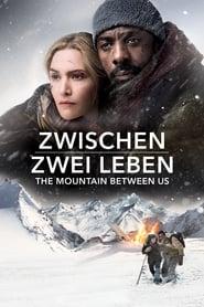 Zwischen zwei Leben (2017)