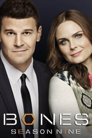 Bones - Season 9 Episode 21 : The Cold in the Case Season 9
